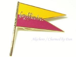 Un drapeau comme pub...