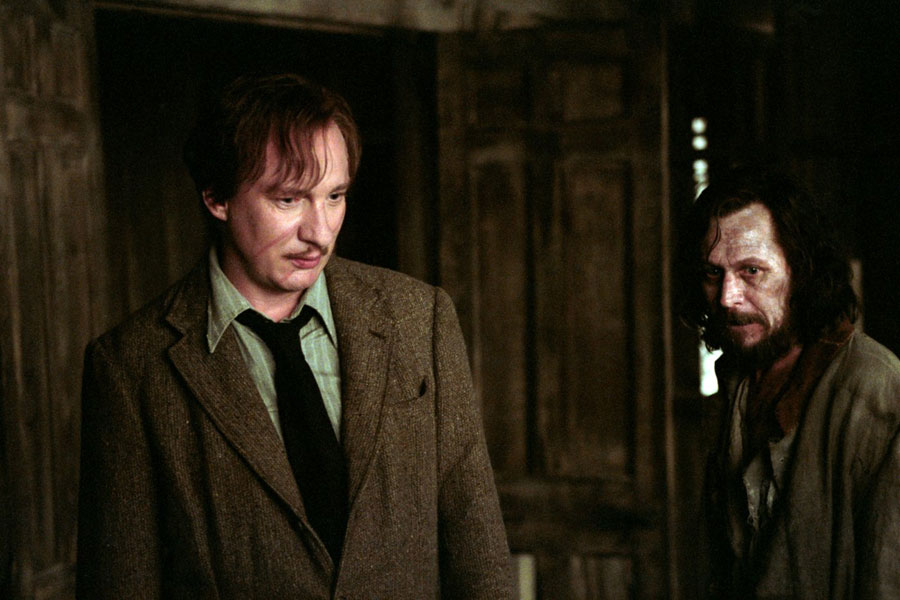 Remus Lupin et Sirius Black