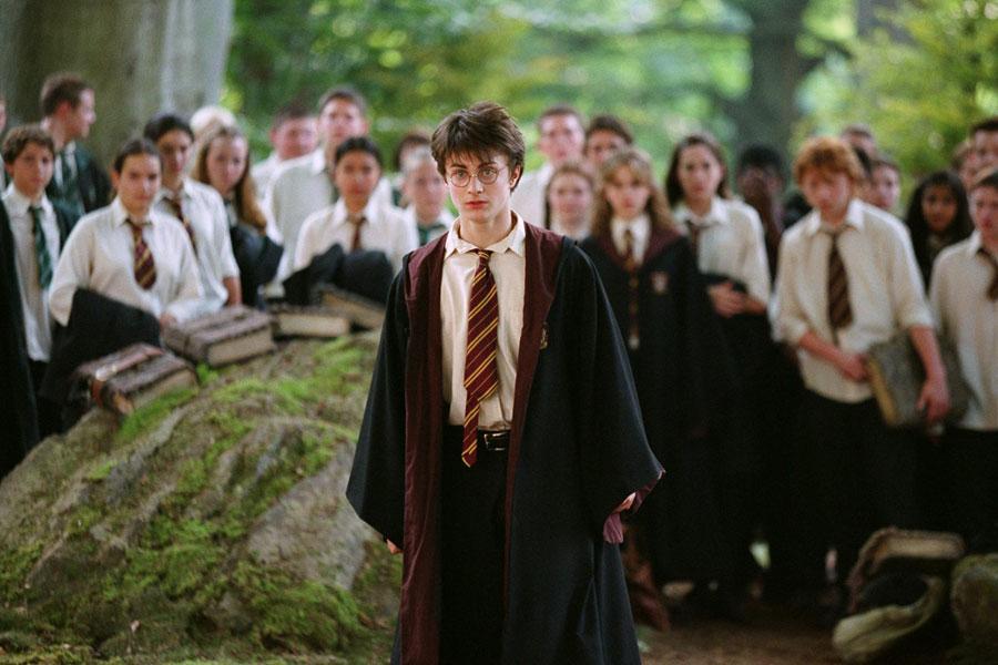 Harry et ses camarades de classe