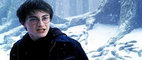 Harry dans la neige
