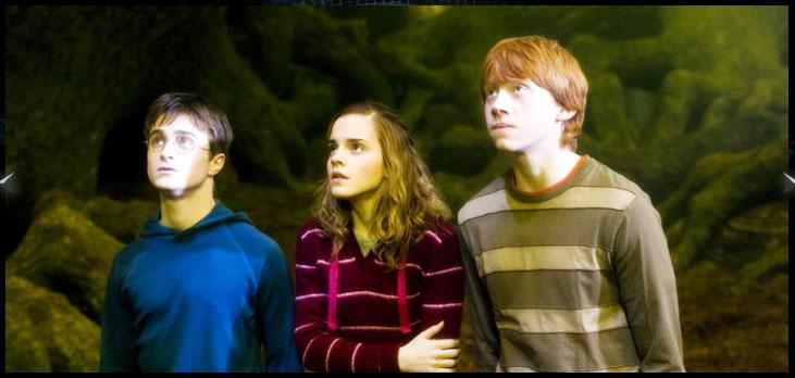 hp5_trio.jpg