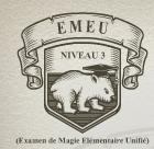 EMEU niveau 3 : les résultats