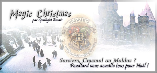 Magic Christmas : la convention Harry Potter