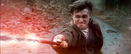 harry_potter_dhp1_23.jpg
