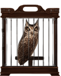 Chouette en cage, illustration de Pottermore