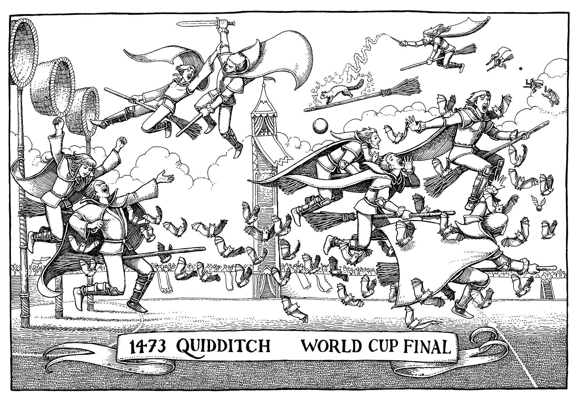 Quidditch à travers les âges - finale 1473 - Tomislav Tomic