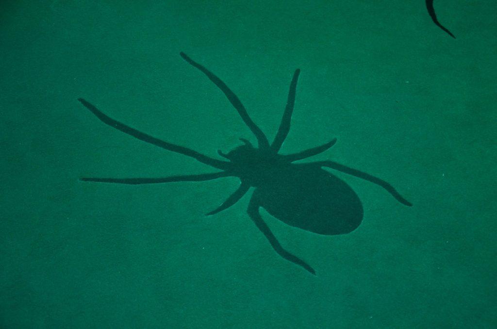 Forêt Interdite au Warner Bros. Studio Tour London - détail d'une araignée sur le tapis vert