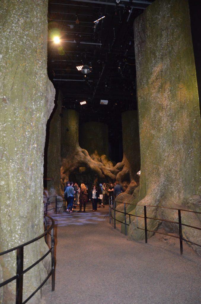 Chemin dans la forêt interdite et ses troncs gigantesques