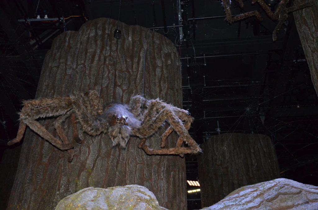 Araignée descendant du plafond