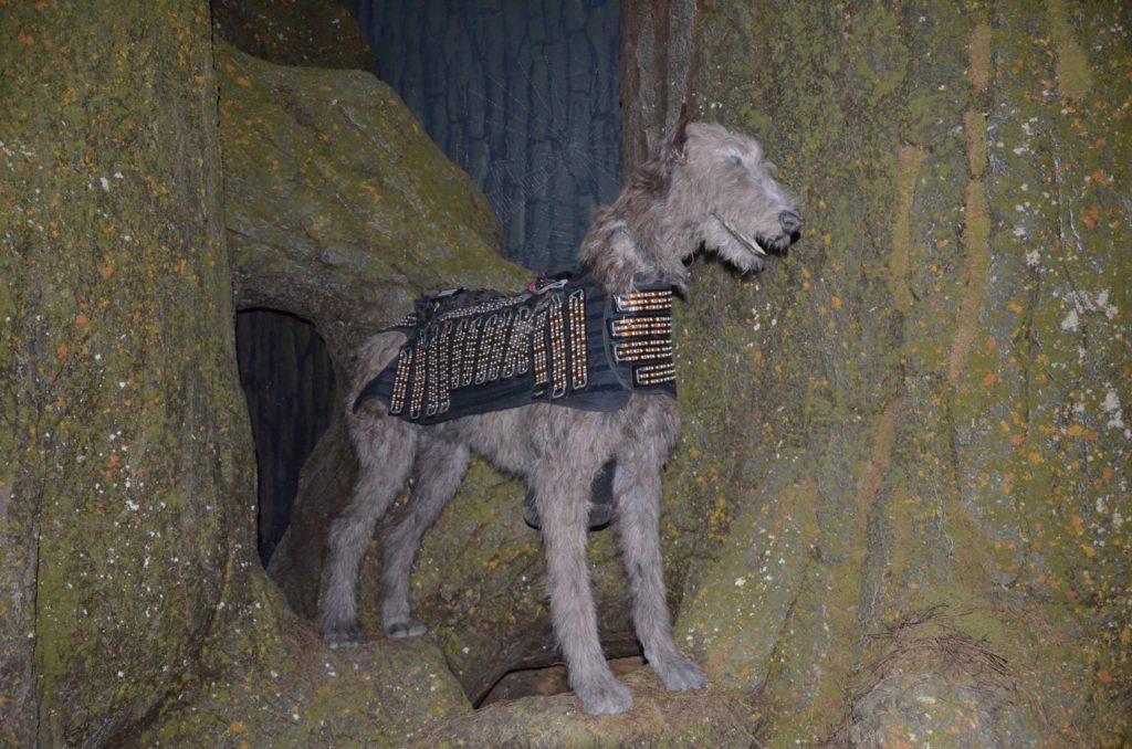 Faux chien équipé d'un gilet lumineux pour simuler un patronus sur le tournage