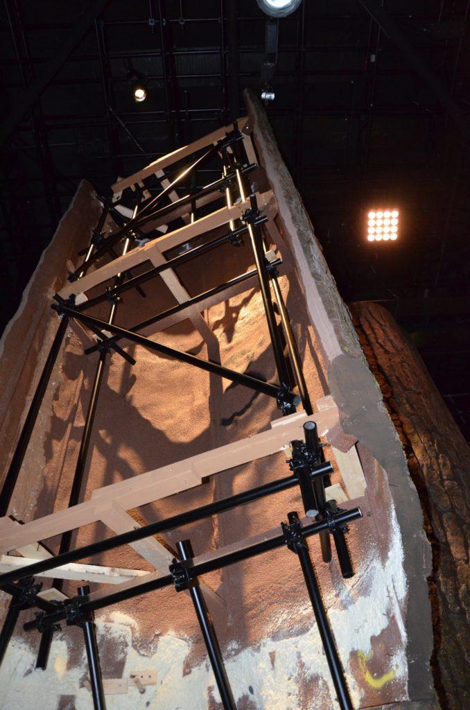 Arrière d'un tronc dans la forêt interdite au Studio Tour London, permettant d'admirer les échaffaudages