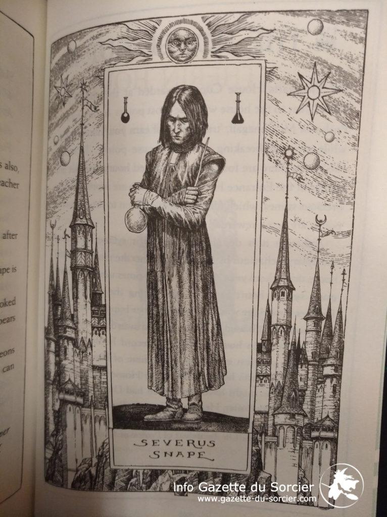 Rogue - Snape par Levi Pinfold