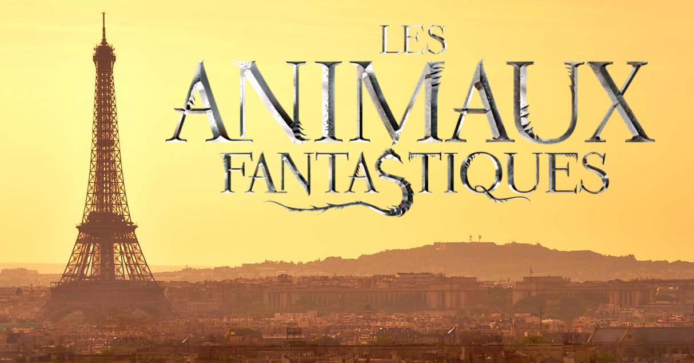 Les Animaux Fantastiques 2 ; nouveaux personnages et Paris confirmé !