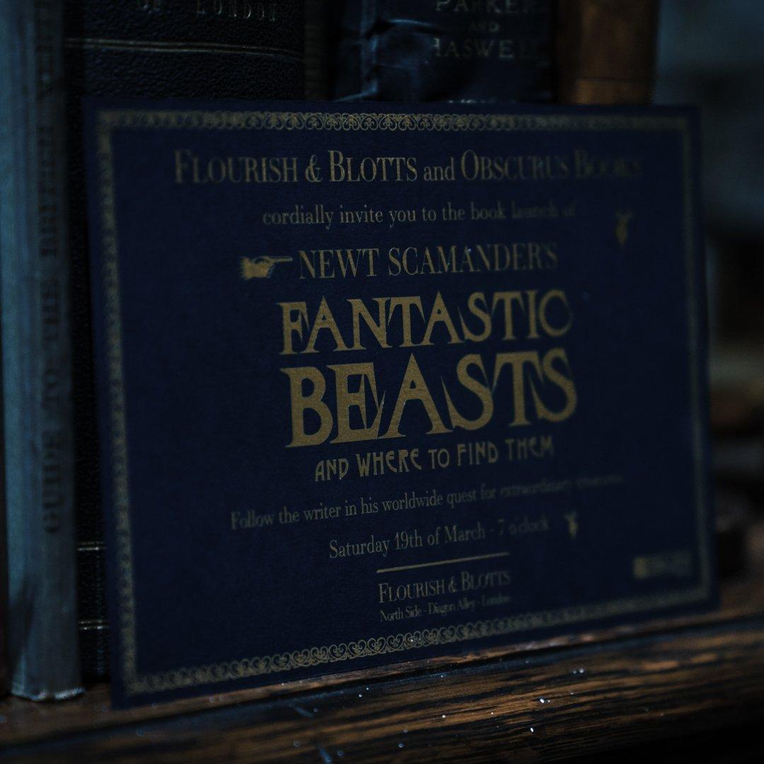 Animaux Fantastiques 2 : le film retournera sur le Chemin de Traverse