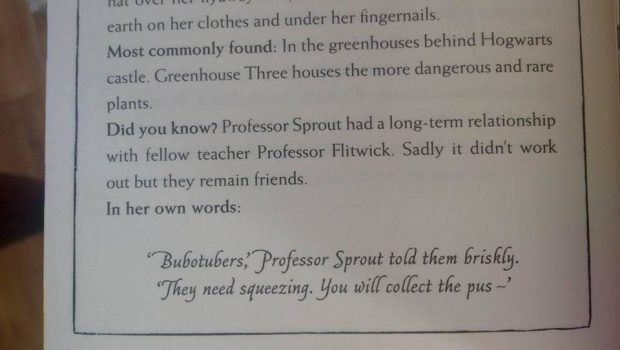 sprout-flitwick-relationship-fake-620x350.jpg