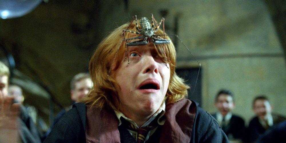 Ron Weasley terrifié lorsqu'une araignée magique est posée sur sa tête par Maugrey Fol Oeil lors d'un cours de défense contre les forces du mal