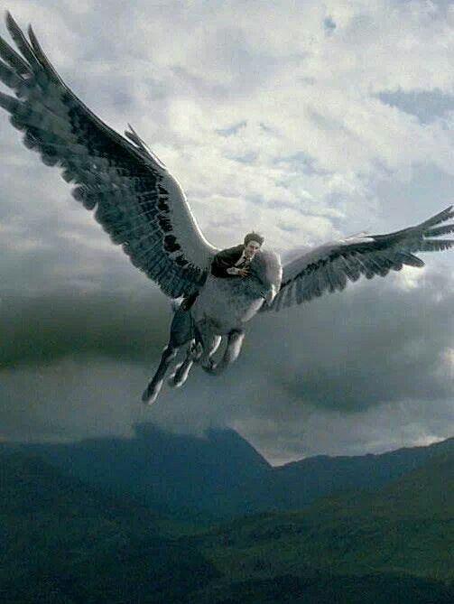 Harry Potter dans le nouveau sons et lumières aquatique d'Universal