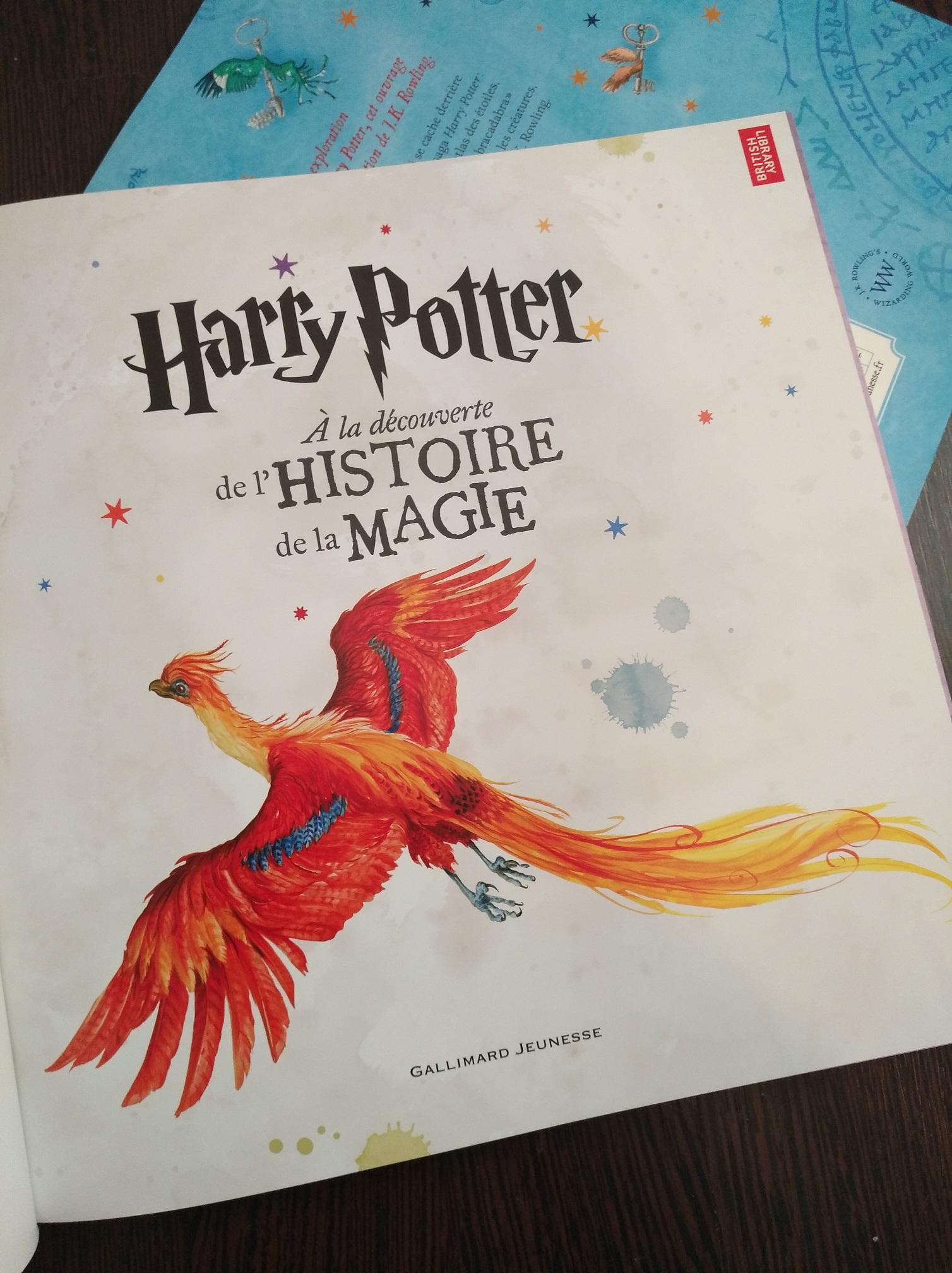Critique : «Harry Potter à la découverte de la magie», le livre familial de l'exposition