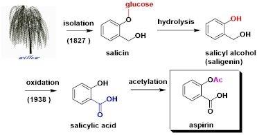 salicin.jpg