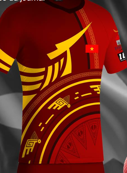 maillot_vietnam.png