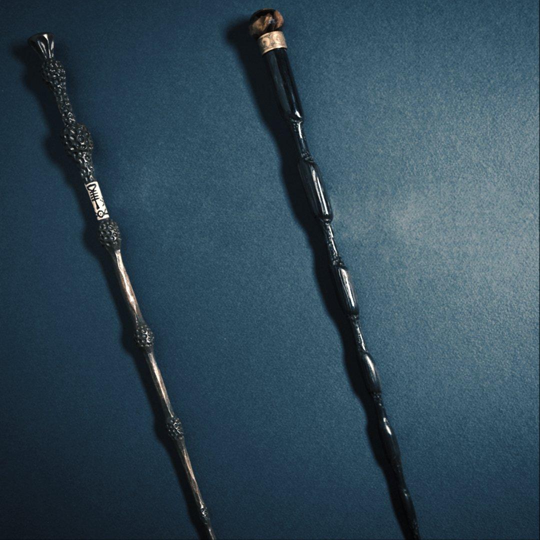 Pourquoi Dumbledore a-t-il changé de baguette ?
