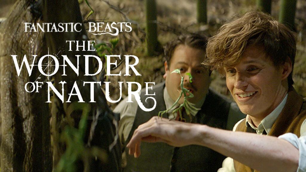 fantastic_beasts_wonder_of_nature_2.jpg