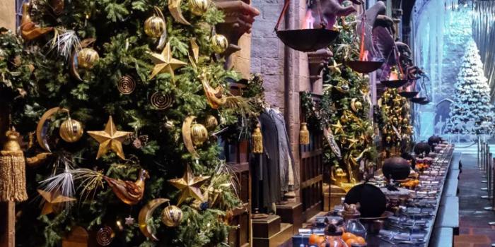Idées cadeaux pour un fan d'Harry Potter