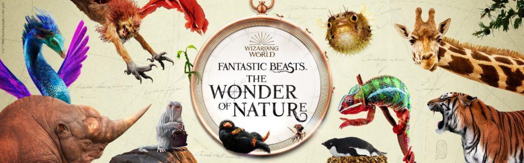 Visuel de l'exposition fantastic beasts wonders of nature