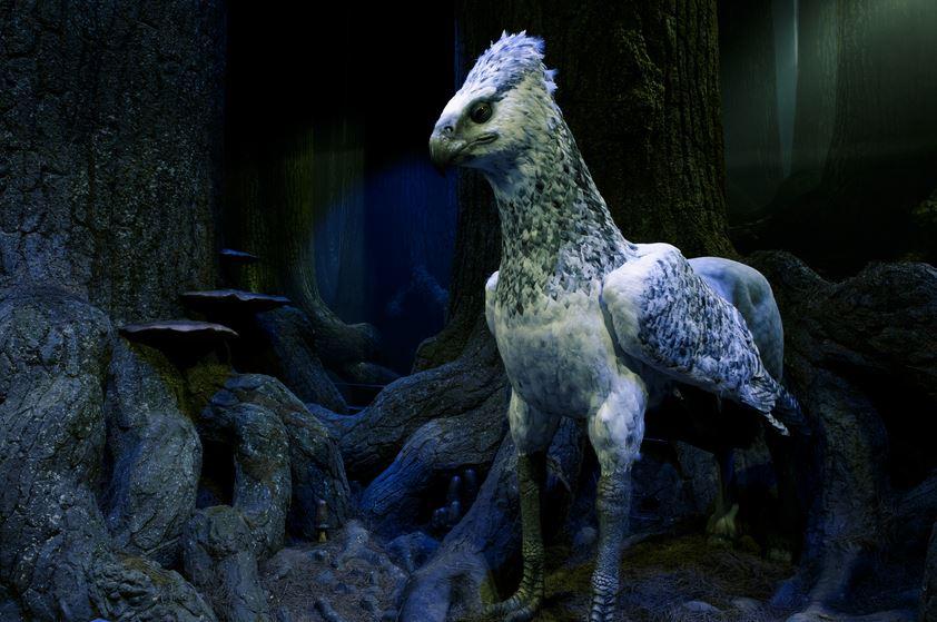 Forêt Interdite du Studio Tour avec l'animatronique de Buck l'hipprogriffe.