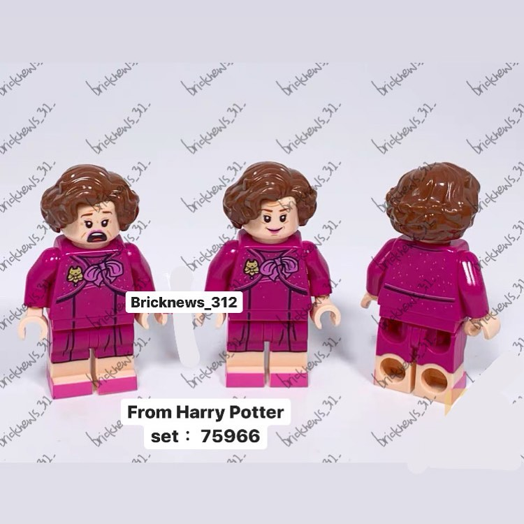 Ombrage dans le set LEGO Forêt Interdite (2020)