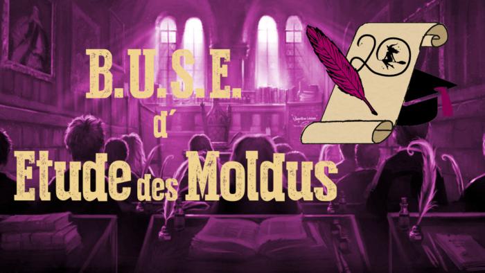 BUSE d'Étude des Moldus – Session 2020