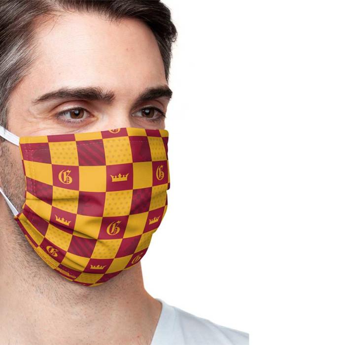 Masque Harry Potter - couleurs de Gryffondor