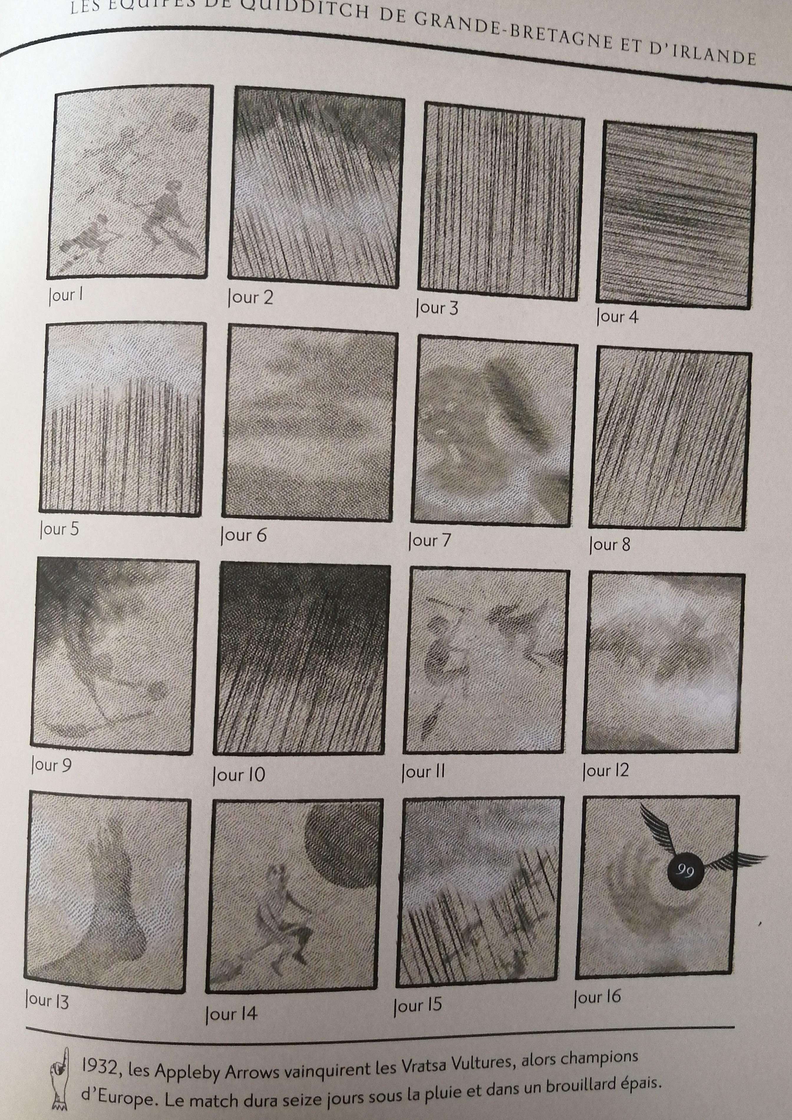 Compte-rendu dessiné d'un match dans Le Quidditch à travers les âges illustré par Emily Gravett - édition Gallimard Jeunesse