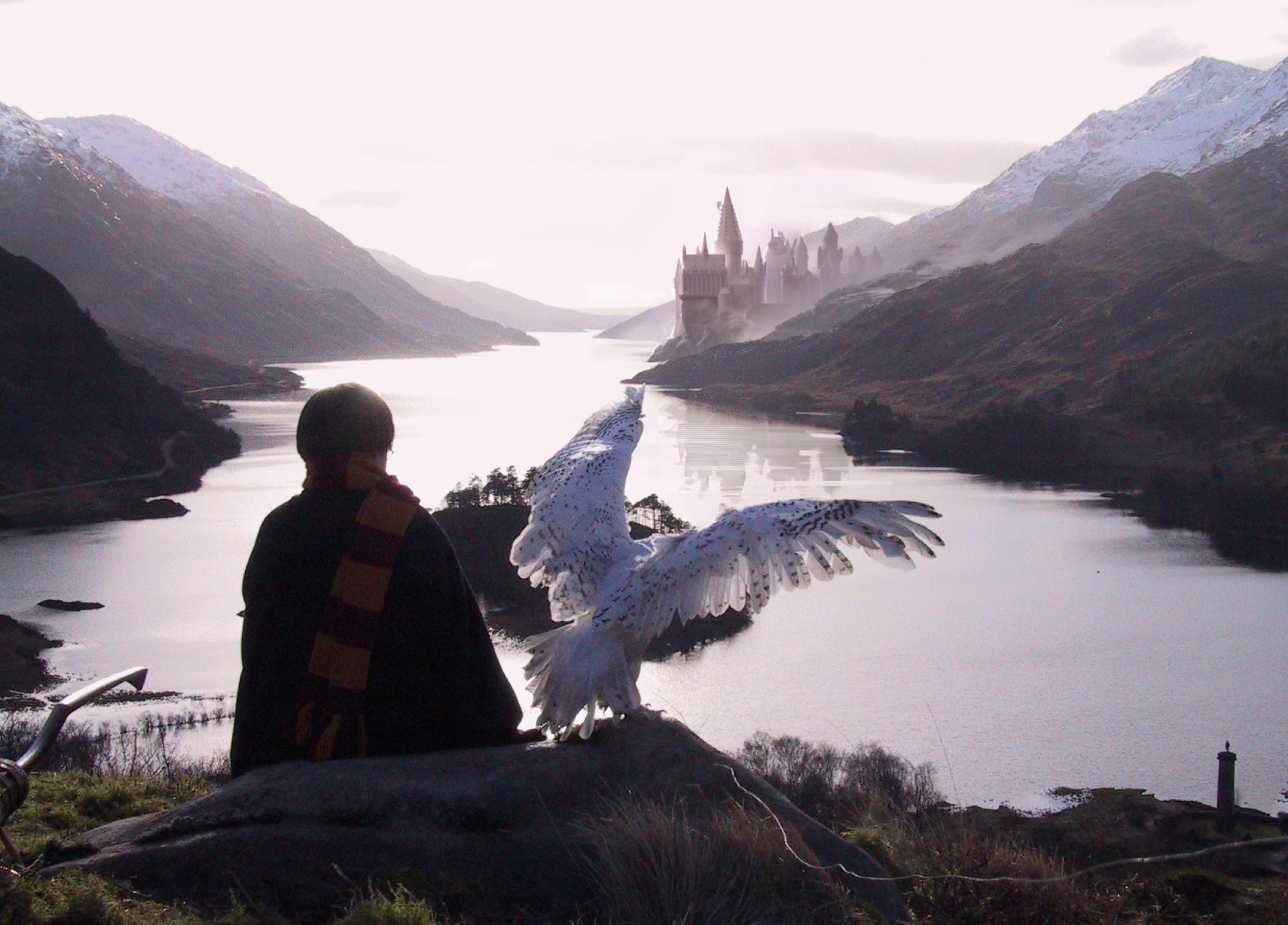 Harry Potter observe Poudlard depuis une colline située à l'opposée du Lac Noir (Loch Shiel) avec Hedwige
