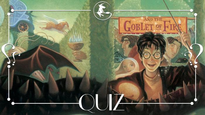 QUIZ : Connaissez-vous ces couvertures Harry Potter ?