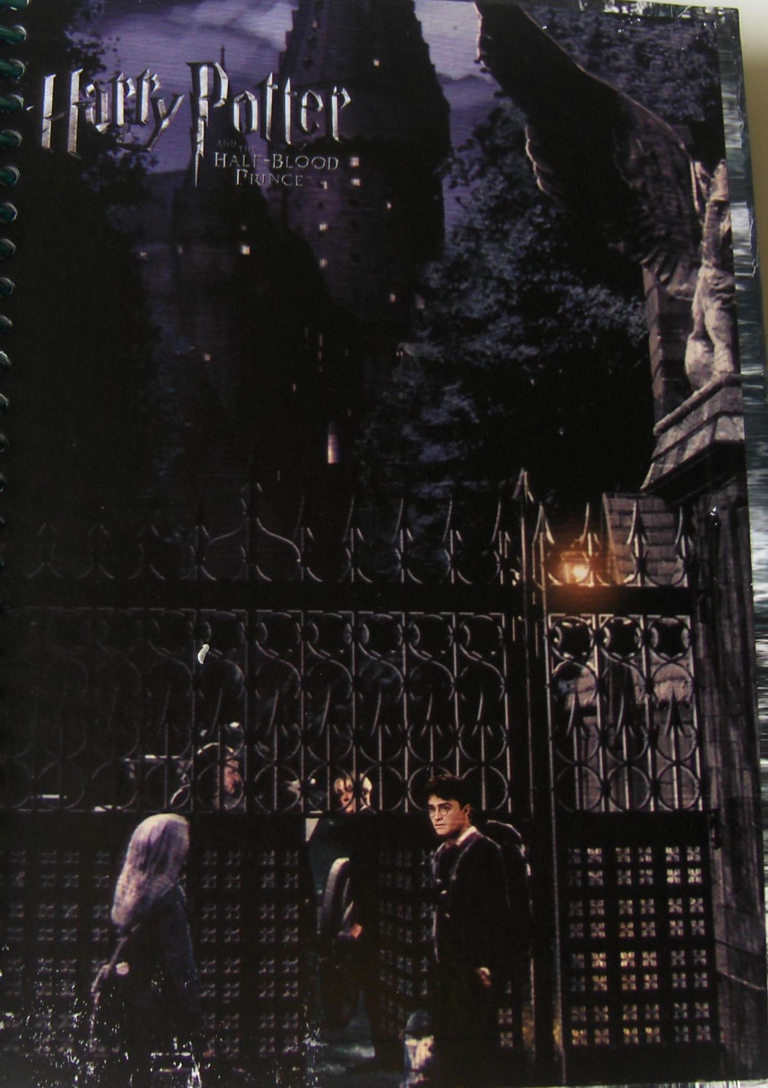 Photographie représentant Harry et Luna devant la grille du château
