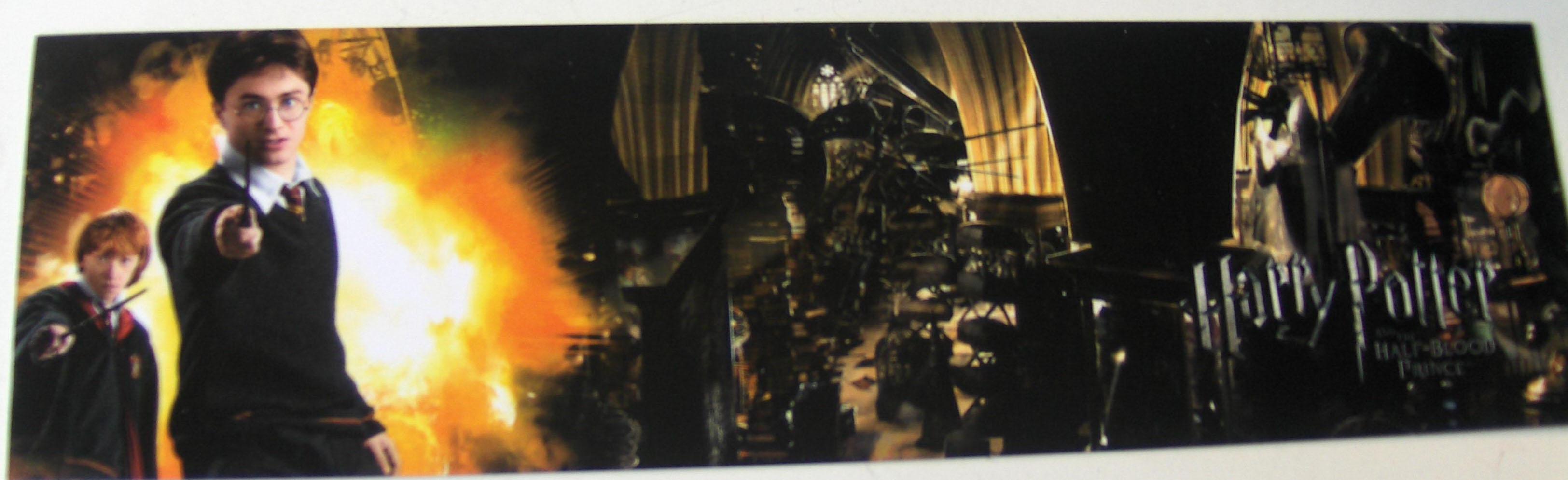 Panorama représentant Ron et Harry en position de combat sur fond de flammes puis la grande salle