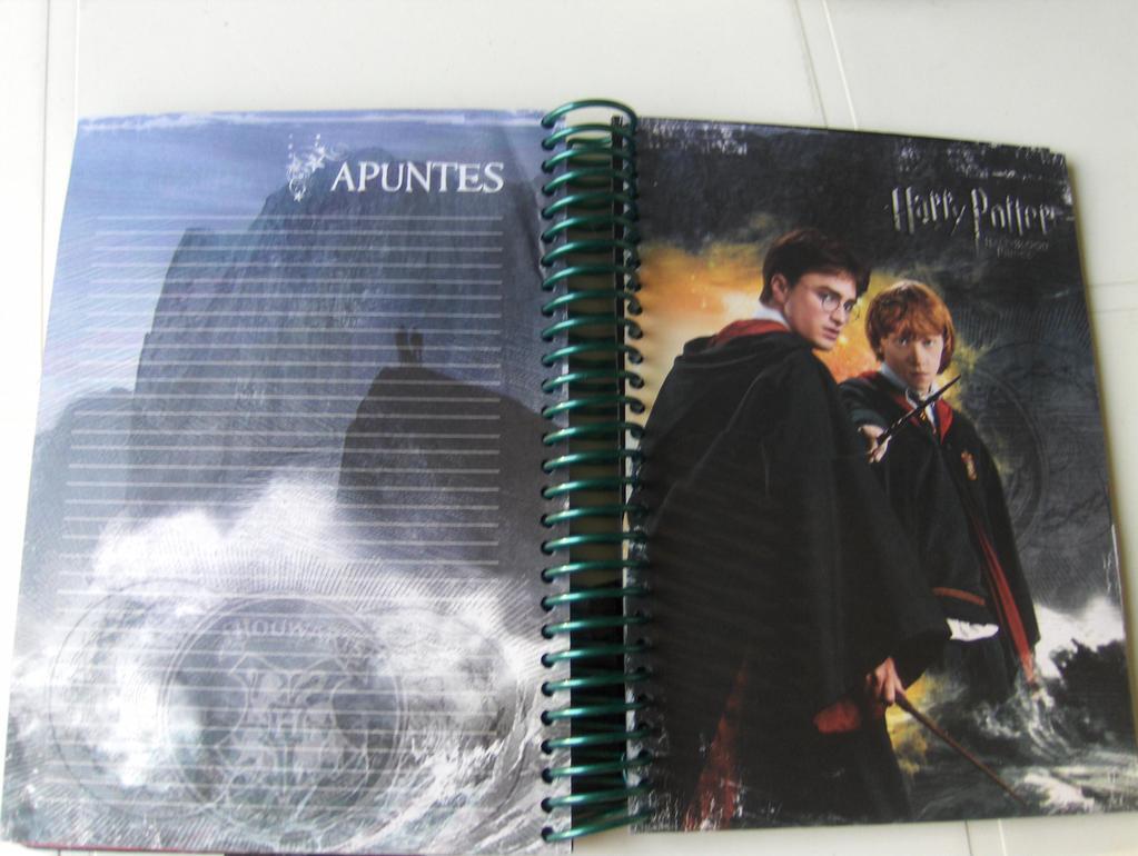 Pages de l'agenda représentant Ron et Harry