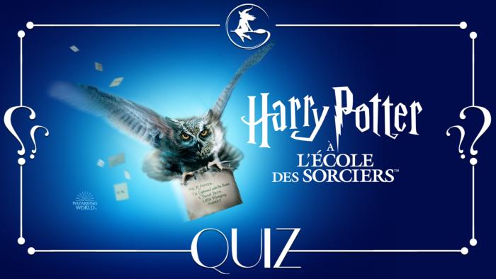Quiz : Harry Potter à l'école des sorciers à la télé