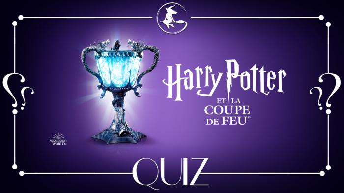 Quiz : Harry Potter et la Coupe de feu à la télé