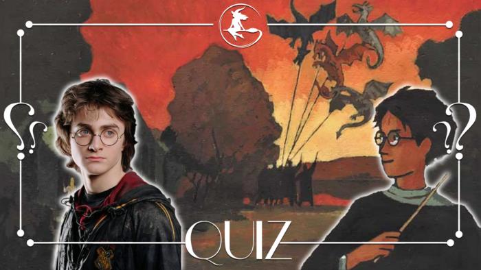 Quiz : Films versus livres Harry Potter