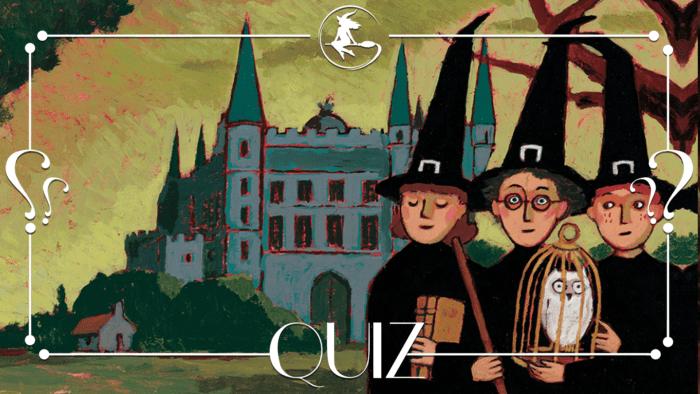 QUIZ : Harry Potter à l'école des sorciers [difficile]