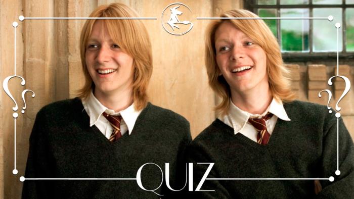Quiz : Fred ou George : Saurez-vous les distinguer ?