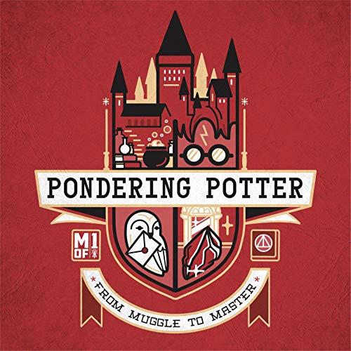pondering potter