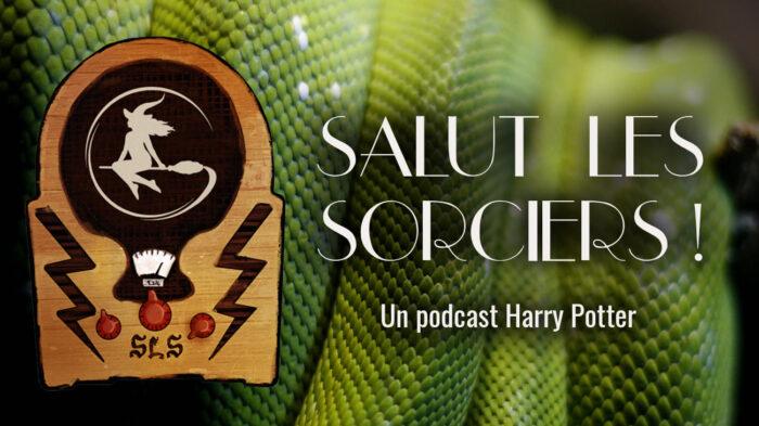 «Salut les Sorciers !» – Ep 20 – Dans la salle commune des Serpentard