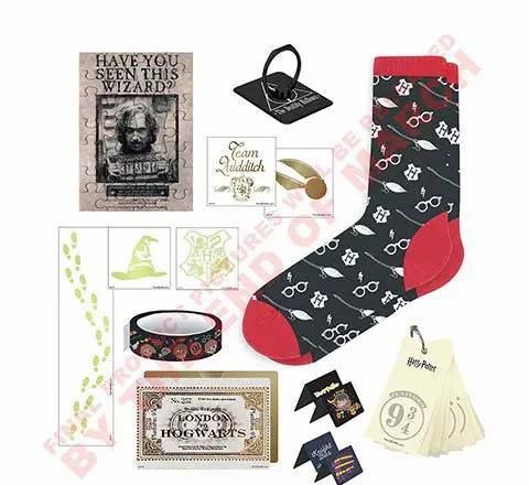 Détail contenu du calendrier Cinereplicas 2021 : mini puzzle affiche de recherche de Sirius Black, bague reliques de la mort, chaussettes motifs lunettes et balais, reproduction du billet de train, porte-celf voie 9 3/4, cartes motifs vif d'or, choixpeau, blason, strap morifs chibi Harry Potter etc.